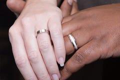 Manos interraciales con los anillos de bodas Foto de archivo libre de regalías