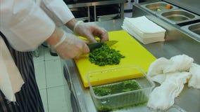 Manos profesionales del ` s del cocinero que tajan el bróculi almacen de metraje de vídeo