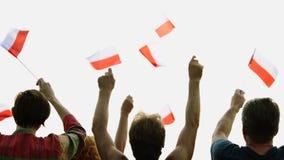 Manos que agitan con las banderas de Polonia almacen de metraje de vídeo