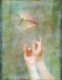 Manos que alcanzan para arriba para el ejemplo de la foto de la mariposa que brilla intensamente Fotografía de archivo libre de regalías