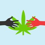 Manos que alcanzan para una hoja EPS de la marijuana Fotografía de archivo