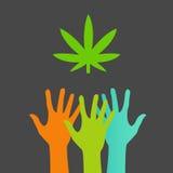 Manos que alcanzan para una hoja EPS de la marijuana Fotografía de archivo libre de regalías