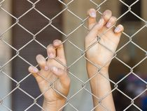 Manos que asen la jaula del acoplamiento Imagen de archivo libre de regalías
