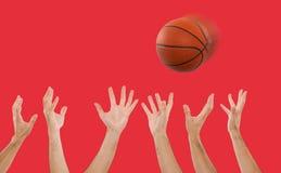 Manos que cogen un baloncesto Imagen de archivo libre de regalías