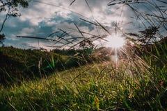Manos que cubren los rayos de sol de una puesta del sol foto de archivo