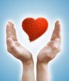 Manos que llevan a cabo el corazón Fotografía de archivo libre de regalías