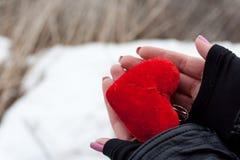 Concepto del amor. llevar a cabo un corazón rojo en manos. Imágenes de archivo libres de regalías