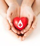 Manos que llevan a cabo el corazón rojo con la muestra dispensadora de aceite Foto de archivo