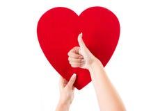Manos que llevan a cabo el corazón y que muestran los pulgares para arriba Foto de archivo