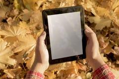 Manos que llevan a cabo el dispositivo digital de la tableta al aire libre Imágenes de archivo libres de regalías