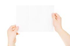 Manos que sostienen el folleto vacío triple, doblado levemente, aislado Foto de archivo