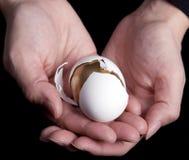 Manos que sostienen el huevo Fotos de archivo