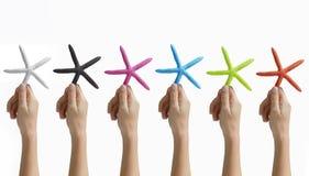 Manos que sostienen estrellas de mar coloreadas Imágenes de archivo libres de regalías