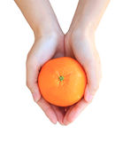 Manos que sostienen la naranja aislada en blanco Imagen de archivo