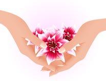 Manos que sostienen las flores tropicales Fotografía de archivo libre de regalías