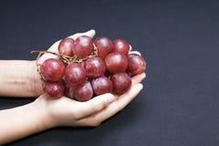 Manos que sostienen las uvas Imágenes de archivo libres de regalías