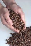 Manos que sostienen los granos de café Imagen de archivo libre de regalías