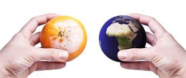 Manos que sostienen un anaranjado putrefacto y el mundo Imagen de archivo libre de regalías