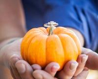 Manos que sostienen una calabaza con un anillo de compromiso en el top Imagenes de archivo