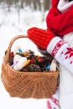 Manos que sostienen una cesta del invierno Imágenes de archivo libres de regalías