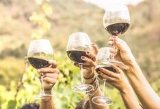 Manos que tuestan la copa de vino roja y a los amigos que se divierten que anima en foto de archivo