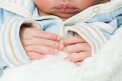Manos recién nacidas de los bebés Fotografía de archivo libre de regalías