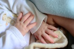 Manos recién nacidas del bebé Foto de archivo