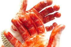 Manos sangrientas fotografía de archivo libre de regalías