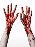Manos sangrientas en un fondo blanco, zombi, demonio, maniaco, aislado Fotografía de archivo libre de regalías