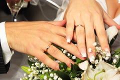 Manos y anillos Fotografía de archivo