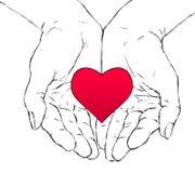 Manos y corazón Fotografía de archivo libre de regalías