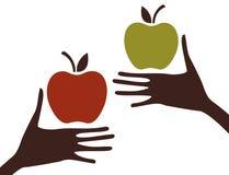 Manos y manzana stock de ilustración