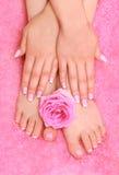Manos y pies con una rosa Fotografía de archivo