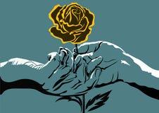 Manos y rosa del amarillo Fotografía de archivo libre de regalías