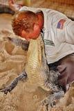 Manovra lottante della fauna selvatica dei terreni paludosi di Florida del parco dell'alligatore Fotografie Stock Libere da Diritti