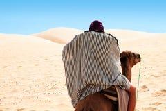 Manridding pelo camelo Foto de Stock