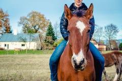 Manridning på en häst Arkivbilder