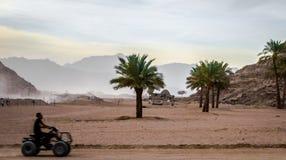 Manritter på en ATV på bakgrunden av öknen och mounen fotografering för bildbyråer