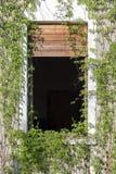 Mansão abandonada Foto de Stock