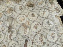 A mansão do mosaico dos pássaros Imagens de Stock Royalty Free