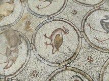 A mansão do mosaico dos pássaros Imagem de Stock Royalty Free
