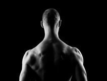 Mans Back Royalty Free Stock Photo