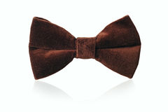 Mans brown velvet bow tie Royalty Free Stock Image