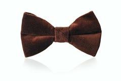 Mans brown velvet bow tie Royalty Free Stock Image