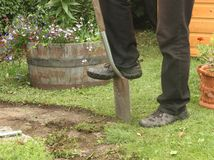 Mans edging garden path with spade Stock Image