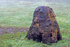 Mans face carved into tree stump Stock Image