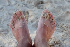 Mans feet on sand beach. Summer vacation concept Royalty Free Stock Images
