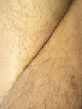 Mans hairy leg Stock Photo