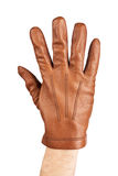 Mans hand in brown leather glove Royalty Free Stock Image