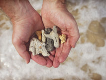 Mans hands holding broken coral in the sea Royalty Free Stock Photos